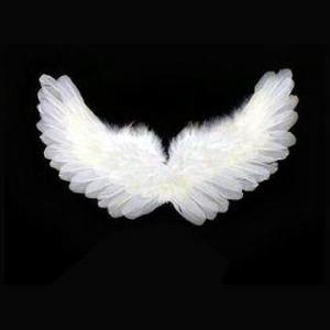 feather_angel_wings